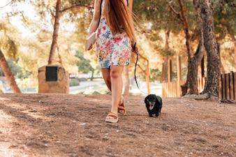 Seção baixa, vista, de, um, mulher caminhando, com, dela, cão, parque