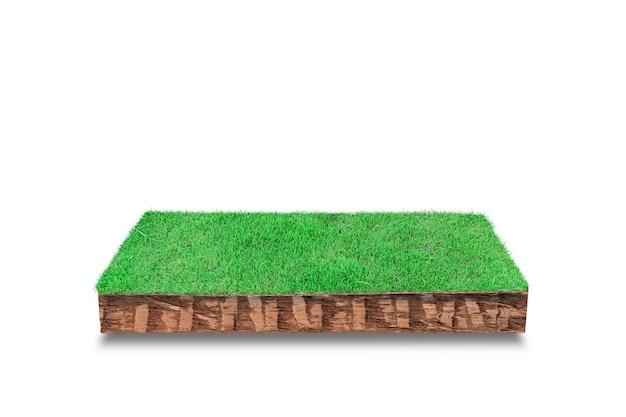 Seção transversal cúbica do solo com grama verde isolada no branco