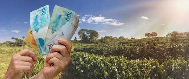 Segurando dinheiro brasileiro no campo de plantação de fazenda de café ao pôr do sol. imagem do conceito de economia agrícola.