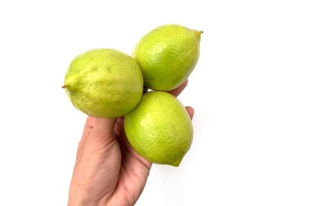 Segurando um limão em um fundo branco