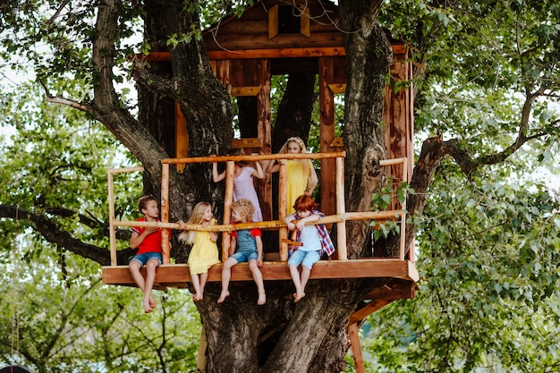 Seis bonitos brilhantes crianças brincando em uma casa na árvore