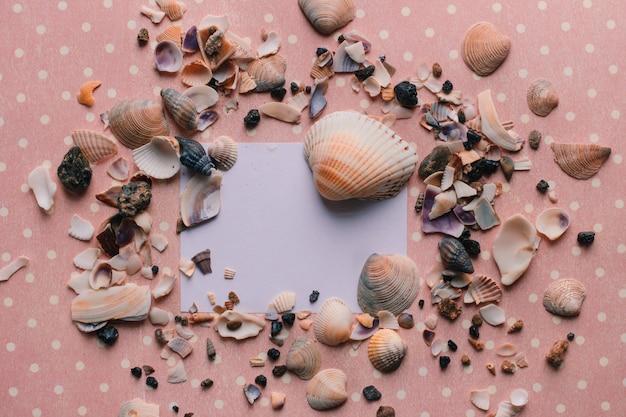 Seixos conchas sobre fundo rosa e adesivo branco vista superior