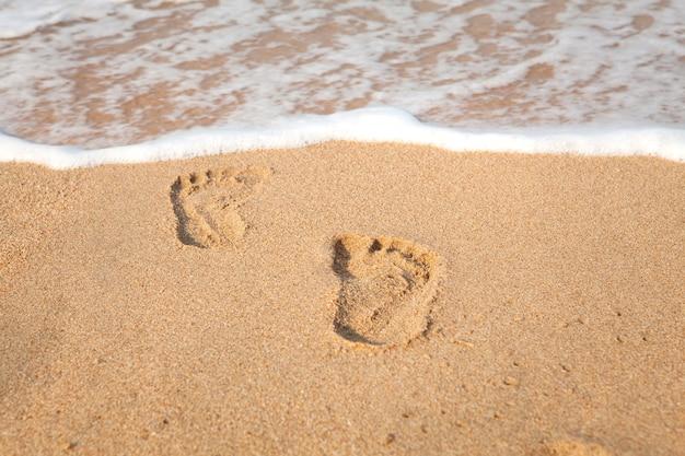 Selo de pés na areia na praia com luz do sol pela manhã