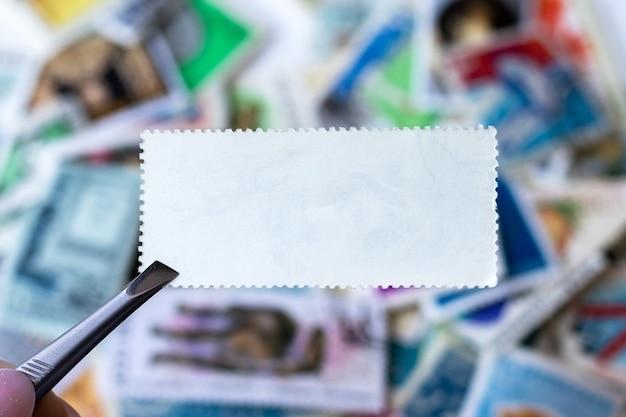Selo em branco na pinça contra coleção de fundo desfocado de selos multicoloridos de diferentes países. foco seletivo