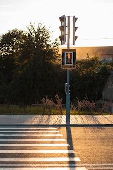 Semáforos vermelhos e faixa de pedestres