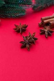 Semente de canela e anis - um conjunto de especiarias para cozinhar carne, assar ou vinho quente, ramos verdes da árvore de natal. o conceito de preparar o jantar de natal, foco seletivo