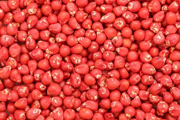 Semente de milho de girassol. cor agro pintada para classificação e rotulagem