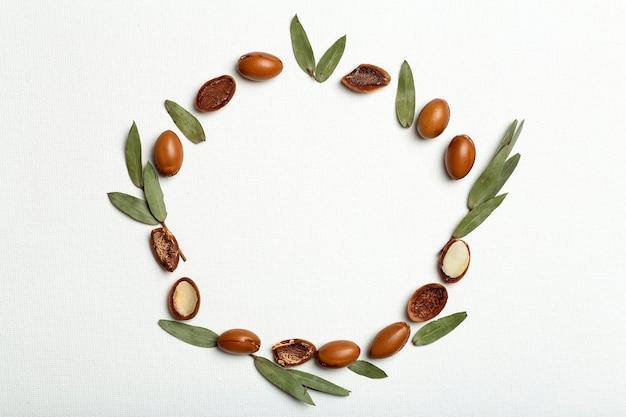 Sementes de argan isoladas em um fundo de quadro branco nozes de óleo de argan com cosméticos vegetais e óleo natural.