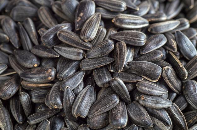 Sementes de girassol pretas