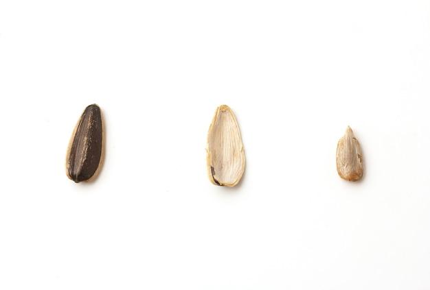 Sementes de girassol sem rodízio, descascadas e secas dentro, dispostas em uma fileira