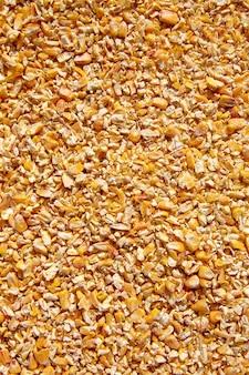 Sementes de milho baixa moído fundo de textura de sementes