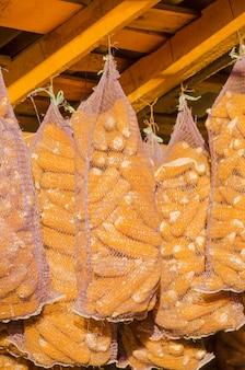 Sementes de milho secas em saco de saco