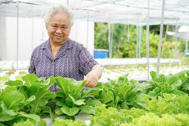 Senhora superior asiática que mantem o vegetal do carvalho verde e vermelho.