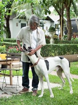 Sênior que joga com o cão grande em seu jardim home.