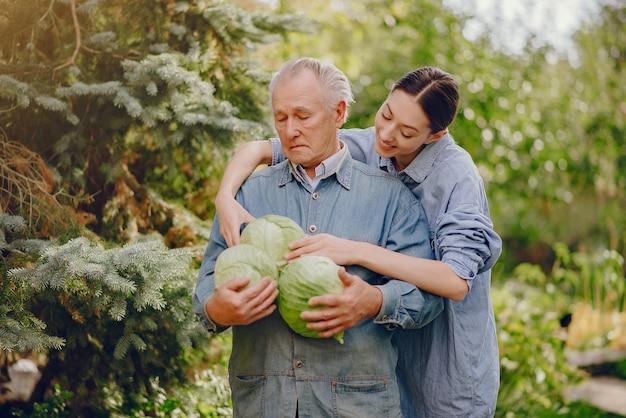 Senior sênior em pé em um jardim de verão com repolho