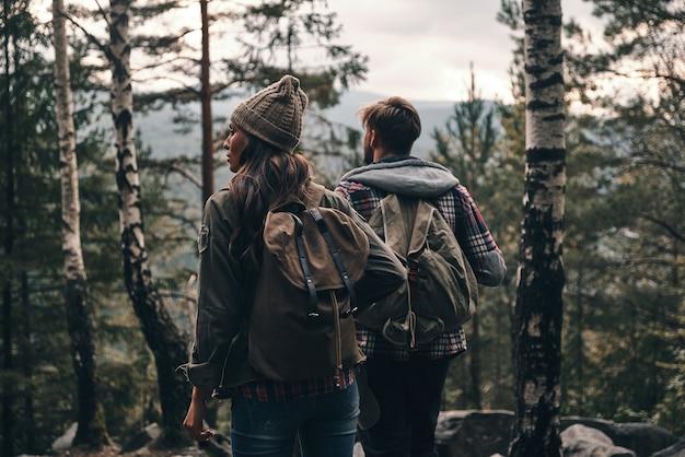 Sentimentos de tirar o fôlego? vista traseira de um jovem casal em pé e olhando para longe durante uma caminhada na floresta