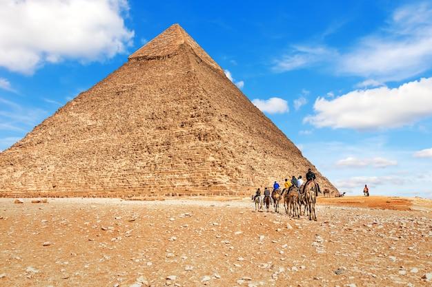 Sequência de camelos perto da pirâmide de chephren, no egito.