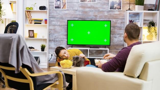 Sequência de menina brincando com seu gato na frente da tv com tela verde. namorado sentado na cadeira comendo pipoca.