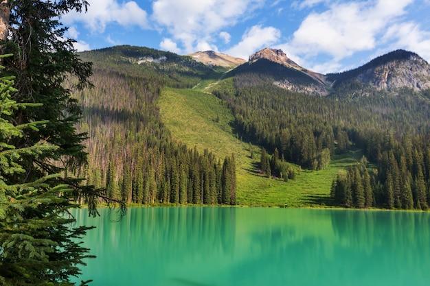 Serenity emerald lake no parque nacional de yoho, canadá. filtro instagram