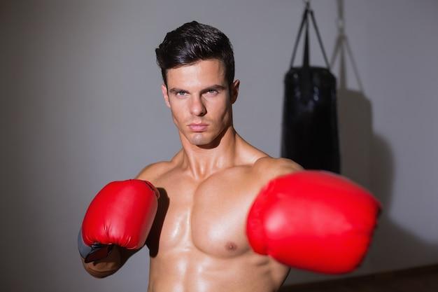 Sério boxer muscular no clube de saúde