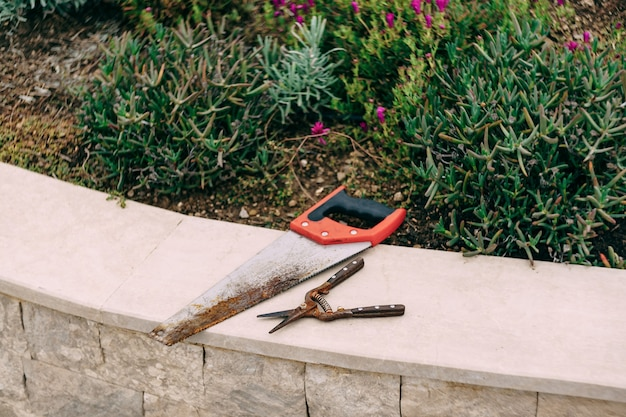 Serra manual e podador deitados no meio-fio perto do canteiro de flores