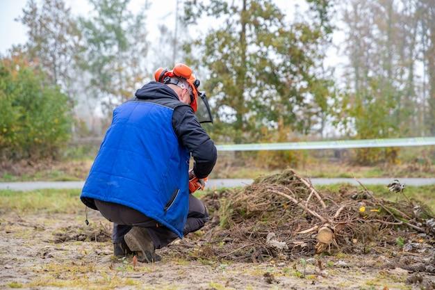 Serrar um galho de árvore com uma serra elétrica enquanto trabalhava na floresta