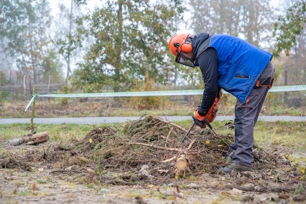 Serrar uma árvore de serra elétrica enquanto trabalhava na floresta