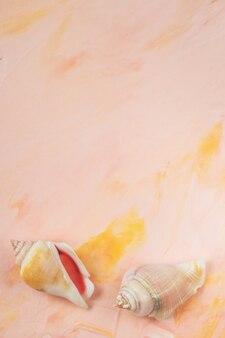 Shell do mar no backround pastel cor-de-rosa do fundo, espaço da cópia. vista plana leiga, superior, modelo de cabeçalho de herói de mídia social. férias de mar e férias de verão abstraem base