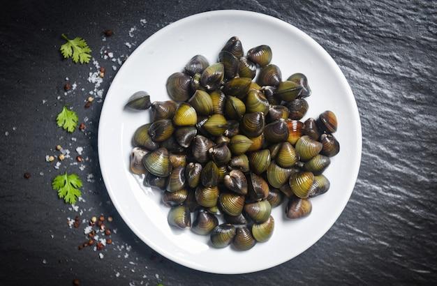 Shijimi marisco bivalve de água doce, como concha de moluscos no prato branco com ervas e especiarias no escuro