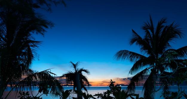 Silhueta, coqueiros, palma, sobre, azul, mar, céu, fundo, em, anoitecer