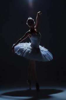 Silhueta da bailarina no papel de um cisne branco no fundo do dack