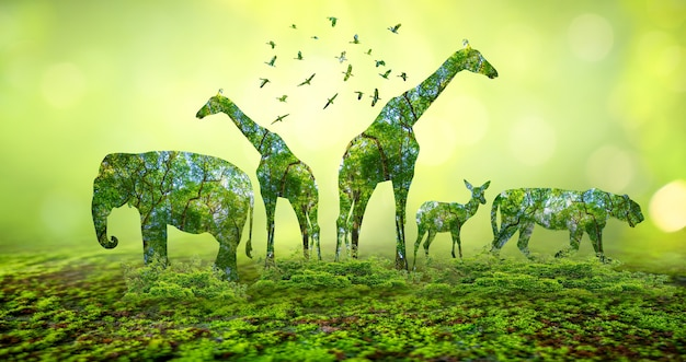 Silhueta da floresta na forma de um conceito de conservação da vida selvagem e da floresta de animais selvagens