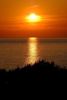 Silhueta de árvores com o mar refletindo o sol e um céu laranja