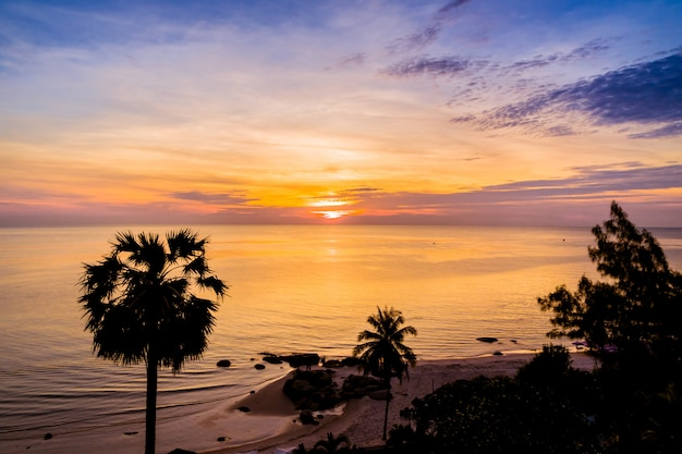 Silhueta de coqueiro com mar e praia