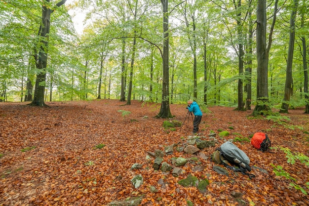 Silhueta de fotógrafo profissional tirando foto da floresta