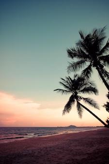 Silhueta de praia tropical durante o crepúsculo do sol