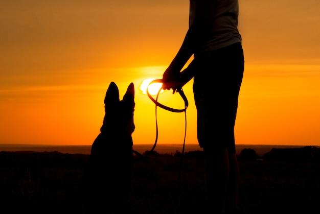 Silhueta de um jovem macho andando com um cachorro no campo ao pôr do sol, cara com um pastor alemão curtindo a natureza, menino sentado em uma laje de concreto perto de seu animal de estimação, o conceito de lazer ativo