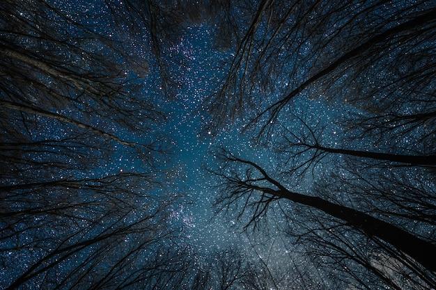 Silhueta de um papai noel gótico voador contra a superfície do céu noturno.