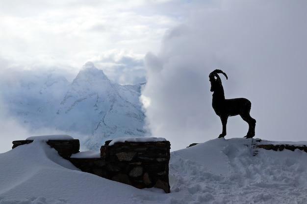 Silhueta de uma cabra em um fundo de nuvens de montanhas nevadas