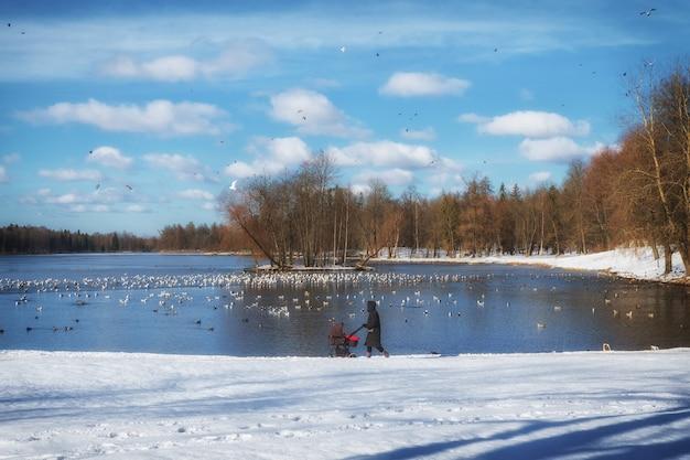 Silhueta de uma mãe com um carrinho de bebê em um lago em um parque de inverno.