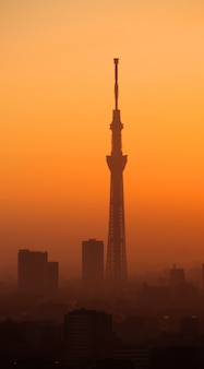 Silhueta do edifício da árvore do céu de tóquio e paisagem da cidade no pôr do sol da noite.