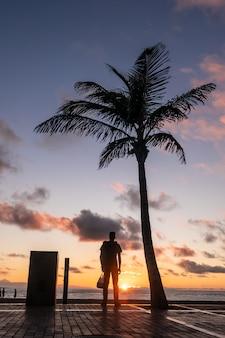 Silhueta do menino e palmeira assistindo o pôr do sol, gran canaria, ilhas canárias.
