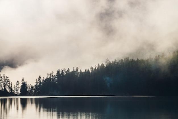 Silhuetas de copas de árvores pontudas na encosta ao longo do lago de montanha em denso nevoeiro. reflexo dos pinheiros para acalmar a água do lago das montanhas. alpina paisagem tranquila no início da manhã. cenário atmosférico fantasmagórico.