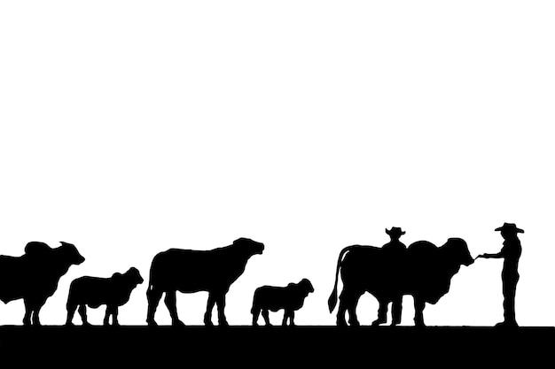 Silhuetas de vaqueiros e gado em fundo branco