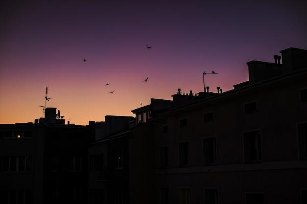 Silhuetas dos edifícios com o céu púrpura do pôr do sol