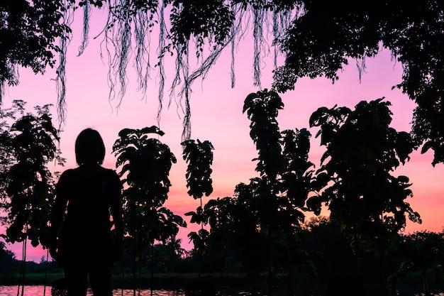 Silhuetas, pôr do sol river's edge. luz e beleza do céu ao pôr do sol.
