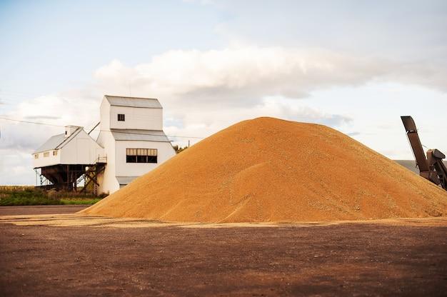 Silos de armazenamento de grãos. celeiro com equipamento mecânico para receber, limpar, secar