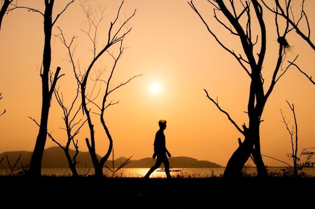 Silueta, de, andar homem, sozinha, em, pôr do sol