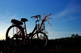 Silueta, de, bicicleta, com, céu azul