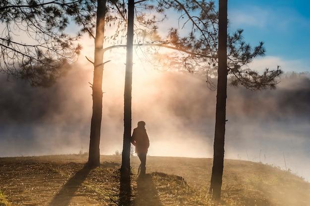 Silueta, de, posição mulher, em, a, profundo, floresta, com, um, nebuloso, e, raio sol, ligado, manhã, tempo